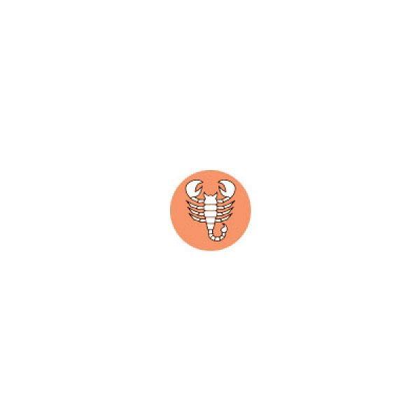 ராசி பலன்கள் - மே 14-ம் தேதி முதல் மே 27-ம் தேதி வரை