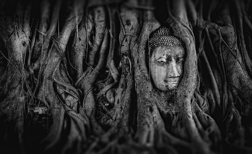`அழிப்பது அல்ல... காப்பதே வீரம்' - அன்பின் வழியை போதித்த புத்தர்அவதரித்த தினம் இன்று!
