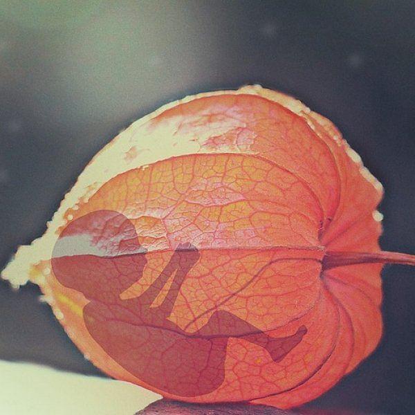 'மருத்துவரின் பரிந்துரையோடு செய்யப்படும் கருக்கலைப்பு, உடல் ஆரோக்கியத்தைக் கெடுக்காது' - ஆய்வு!