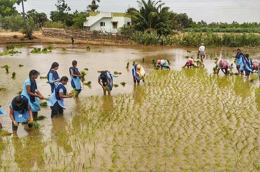 வானிலை அறிவிப்பு மட்டுமல்ல, வானிலை படிப்புகளும் சுவாரஸ்யம்தான் - வழிகாட்டும் வல்லுநர்#LetsLearn