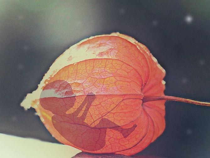 யூடியூப் வீடியோ பார்த்து கருவைக் கலைத்த ஏழு மாத கர்ப்பிணி; காவல்துறை விசாரணை!