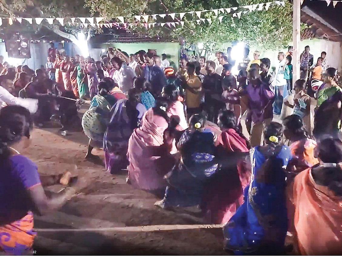காம்போ கலெக்டிங்: திருவிழா விளையாட்டுகள்