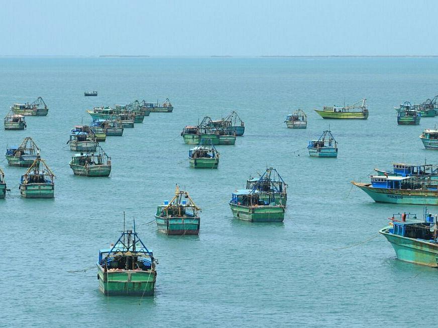 தேசிய கடல் மீன்வள ஒழுங்குமுறை வரைவுச் சட்டம்: `உலக வரலாற்றிலேயே மோசமானது' - கொந்தளிக்கும் மீனவர்கள்