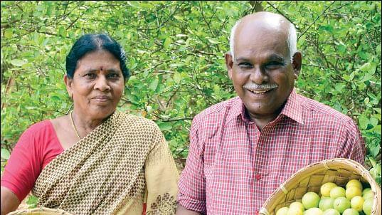 செந்தாமரை, சண்முகவேலு