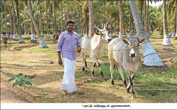 ₹ 27 lakhs income per annum... an impressive organic farm in 37 acres!