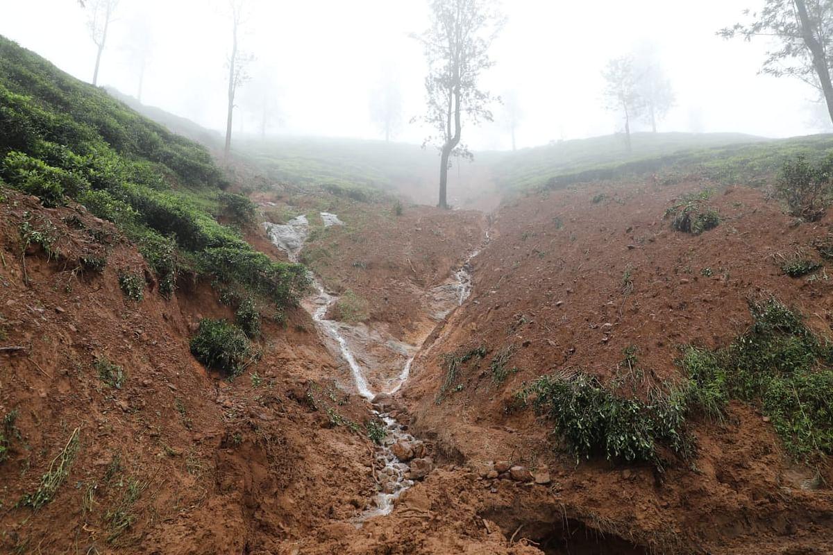 rain fall in Nilgiris