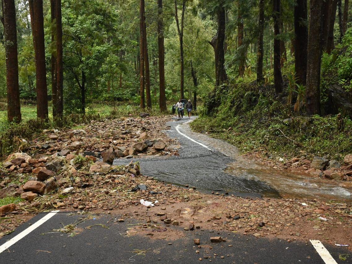 சாலையெங்கும் சரிந்துகிடக்கும் மரங்கள், துண்டிக்கப்பட்ட கிராமங்கள்... கூடலூர் ஸ்பாட் ரிப்போர்ட்!