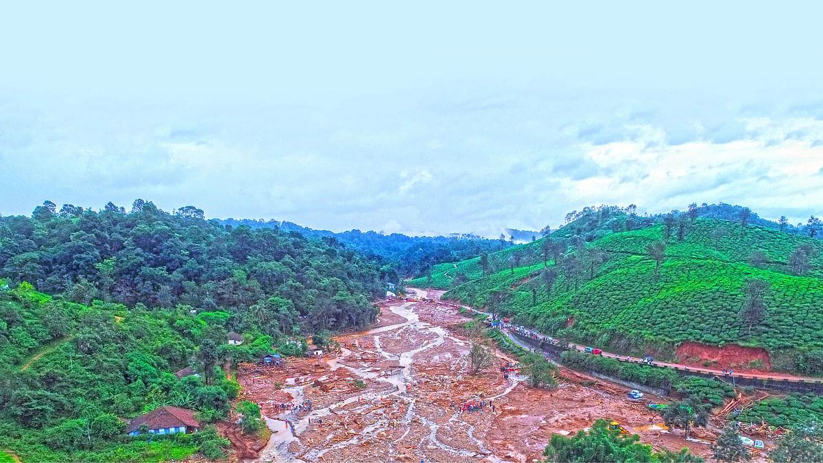 மேற்குத் தொடர்ச்சி மலை