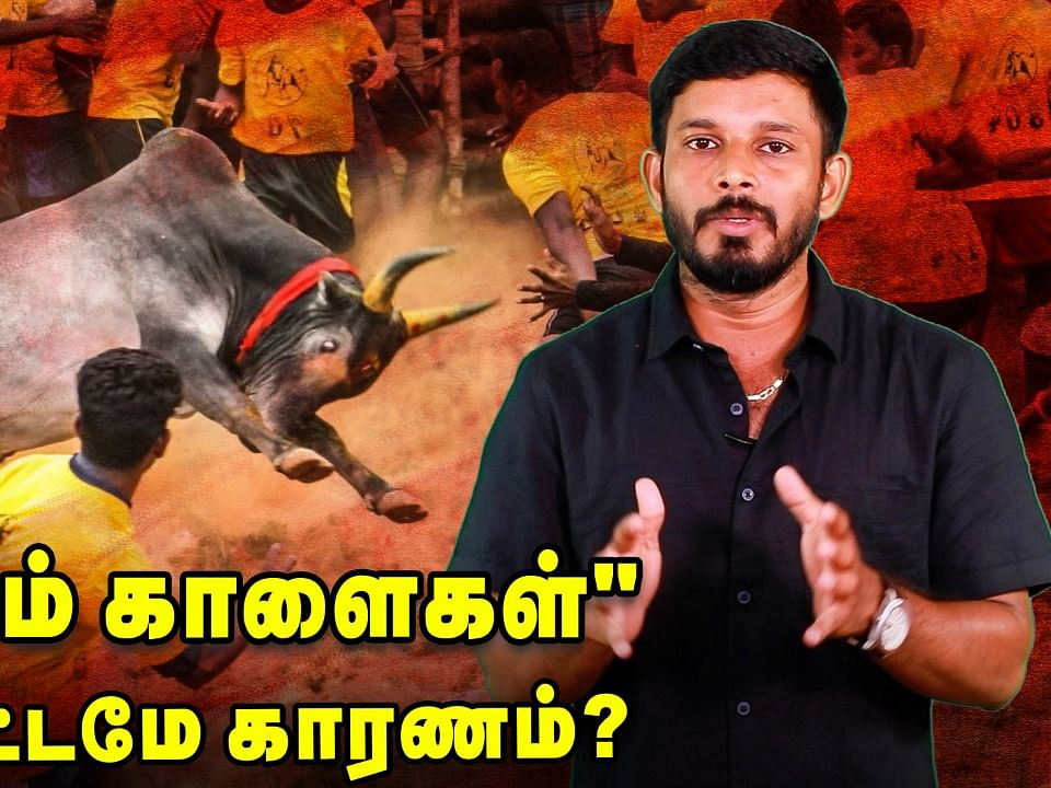 Edappadi Announced new law against Jallikattu Bulls!