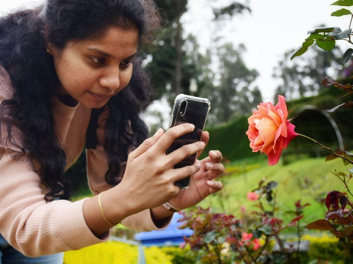 `தெற்காசியாவின் மிகப்பெரிய தோட்டம்!'- சர்வதேச ரோஜா தினத்தைக் கண்டுகொள்ளாத ஊட்டி அதிகாரிகள்