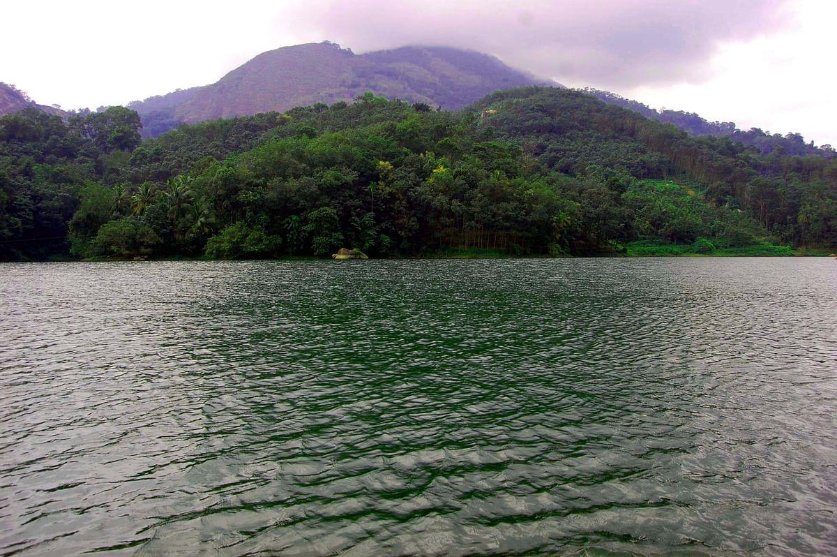 குன்னத்து மலை வனப்பகுதி