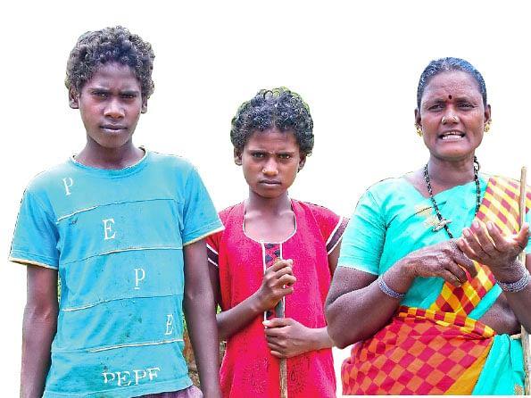 அன்குழி, மீனா, பாலகௌரம்மா