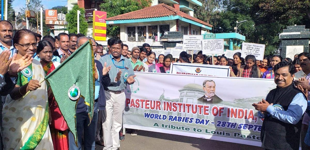 pasteur institute of india
