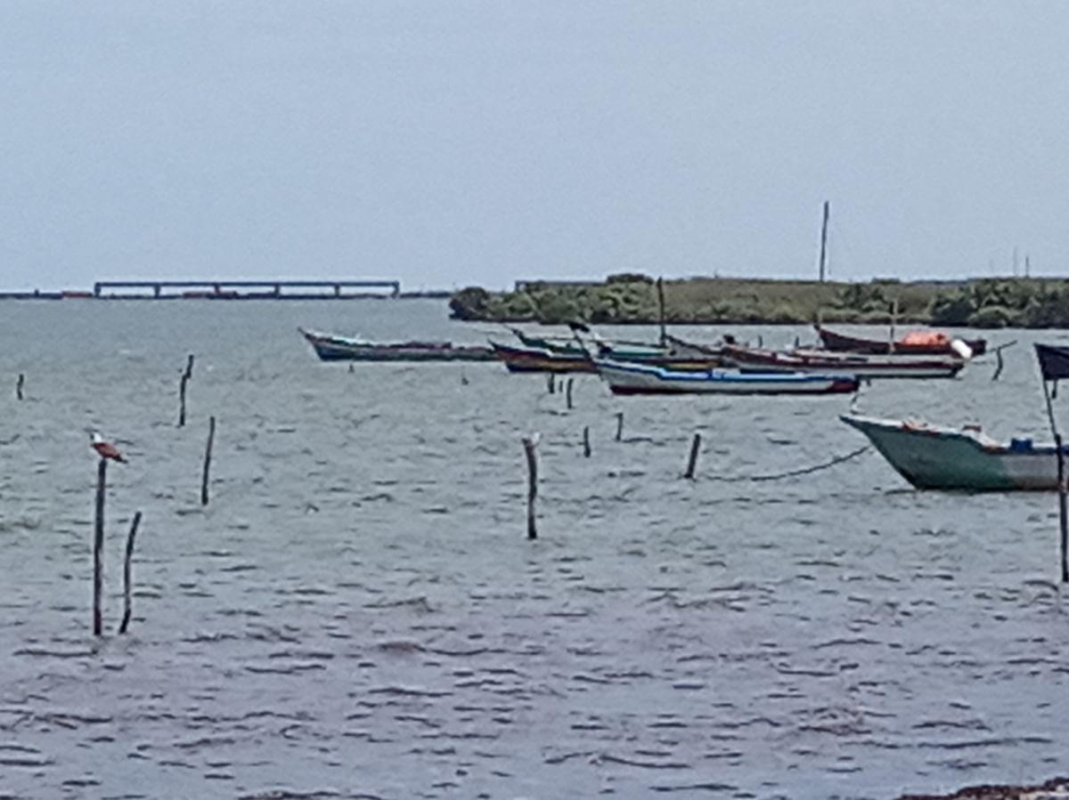 உப்பூர் அனல்மின் நிலைய கடல் பாலம்