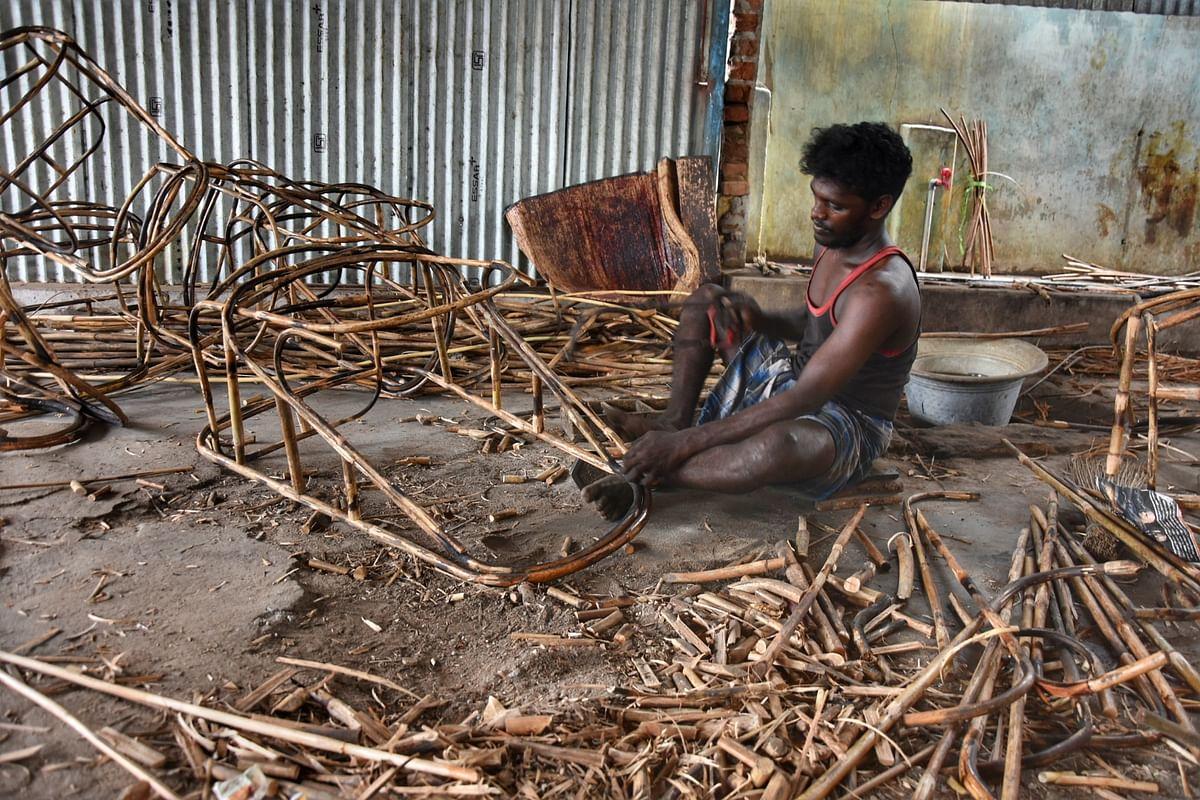 மூங்கில் பிரம்புகளை தேவையான அளவில் வெட்டுகின்றனர்