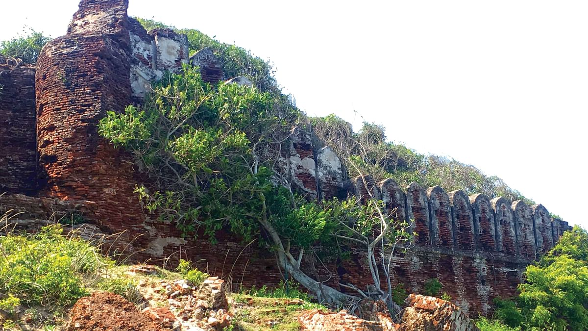 ஆலம்பரைக் கோட்டை