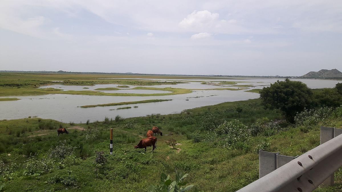 நிரம்பாத ஏரிகள், விவசாயி
