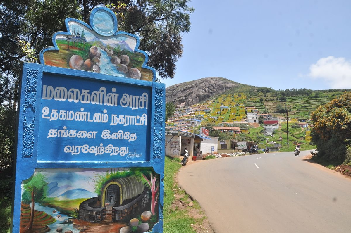 ooty entrance
