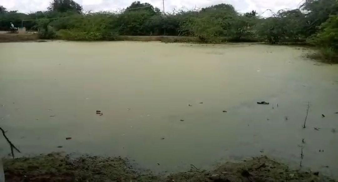 மாசடைந்த குட்டை