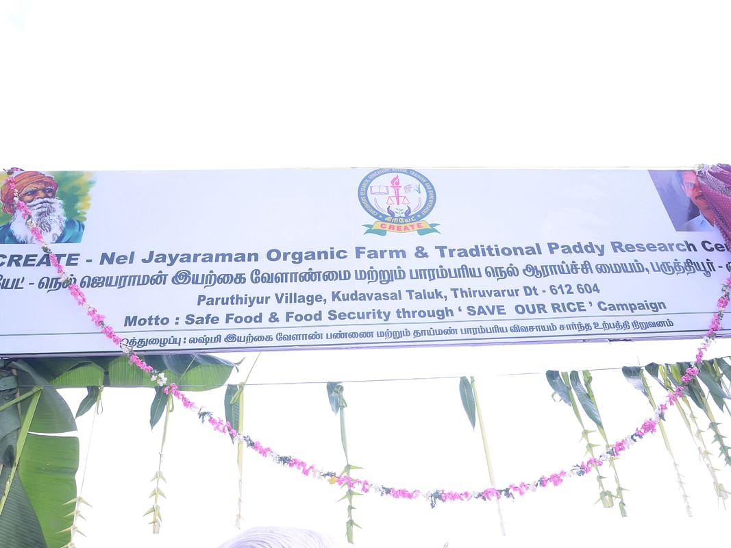 `55 பாரம்பர்ய நெல் ரகங்கள்; இயற்கை வேளாண் பயிற்சி!' - அசத்தப்போகும் `நெல்' ஜெயராமன் ஆராய்ச்சி மையம்