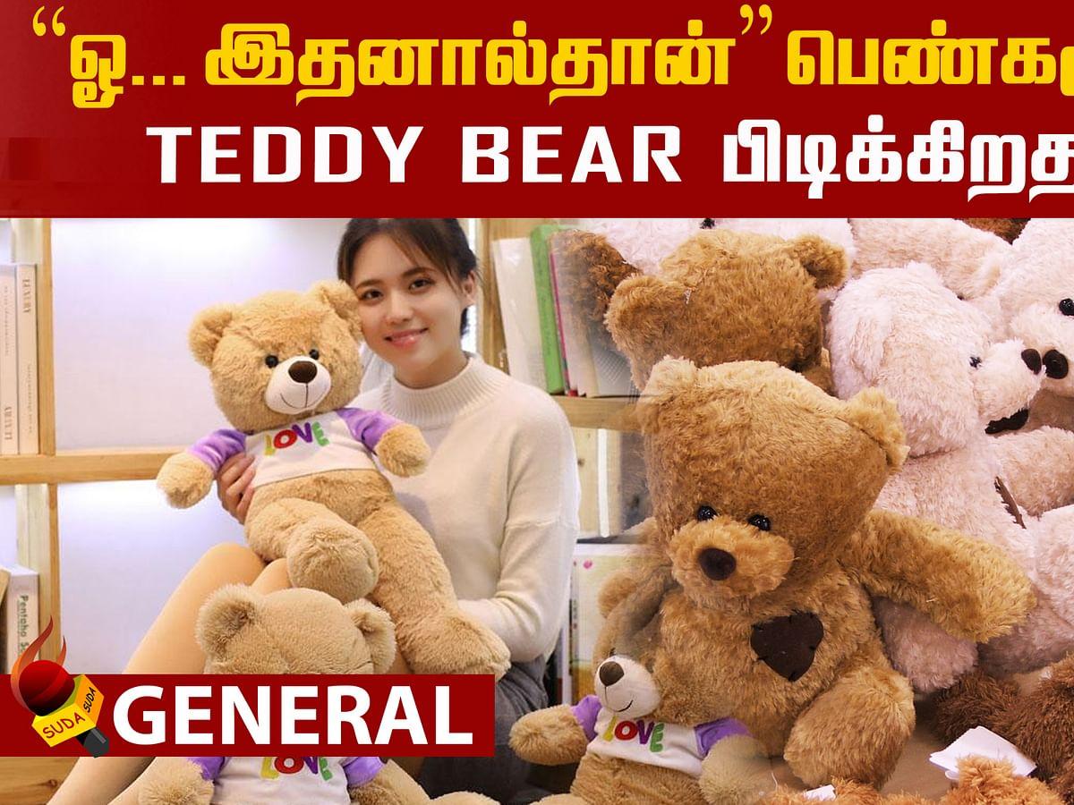 Why do girls like Teddy Bear?