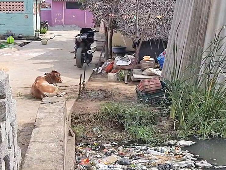 மலக்குழி அல்ல... சவக்குழி - காவு வாங்கும் சமூக அநீதி!