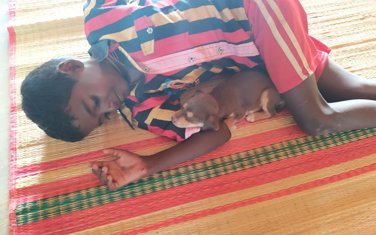 குணாவும் குட்டி பரணியும் - சுட்டிகளுக்கான குட்டிக்கதை #DailyBedTimeStories #VikatanPodcast