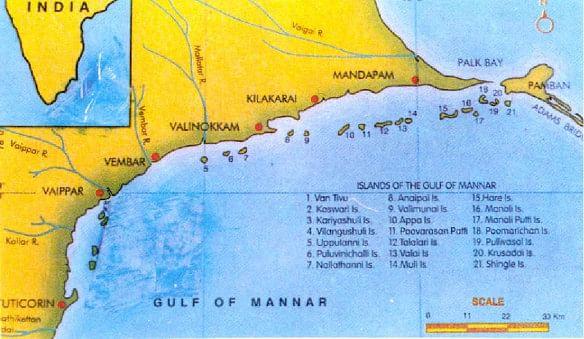 மன்னார் வளைகுடா தீவுகள்