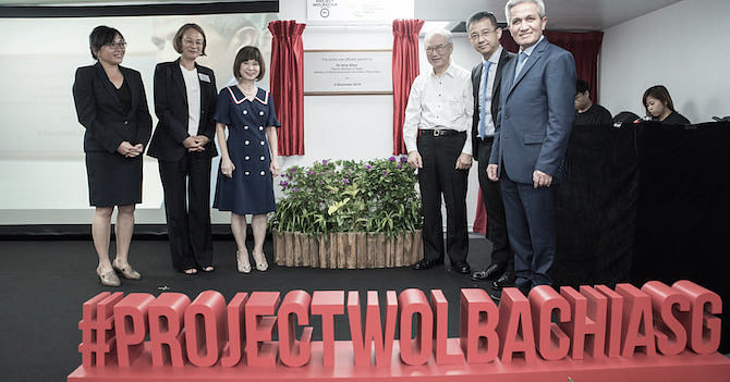 'Project Wolbachia Singapore' ஆய்வுக்குழு.