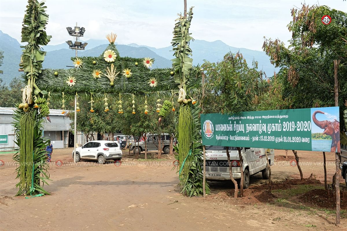 யானைகள் நல்வாழ்வு முகாம் 2019-2020