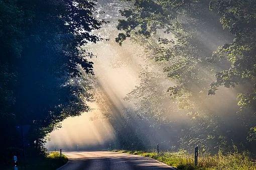 Morning | Representational Image