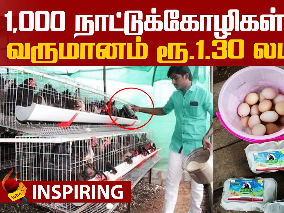 Poultry farming Business ideas!