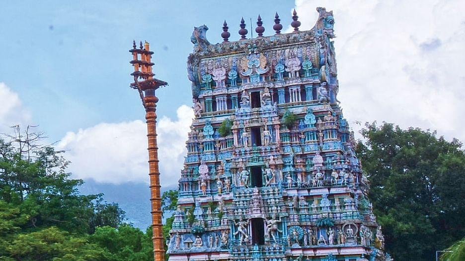 Sakthi Vikatan - 14 January 2020 - மஞ்சள் இடித்தால் ...