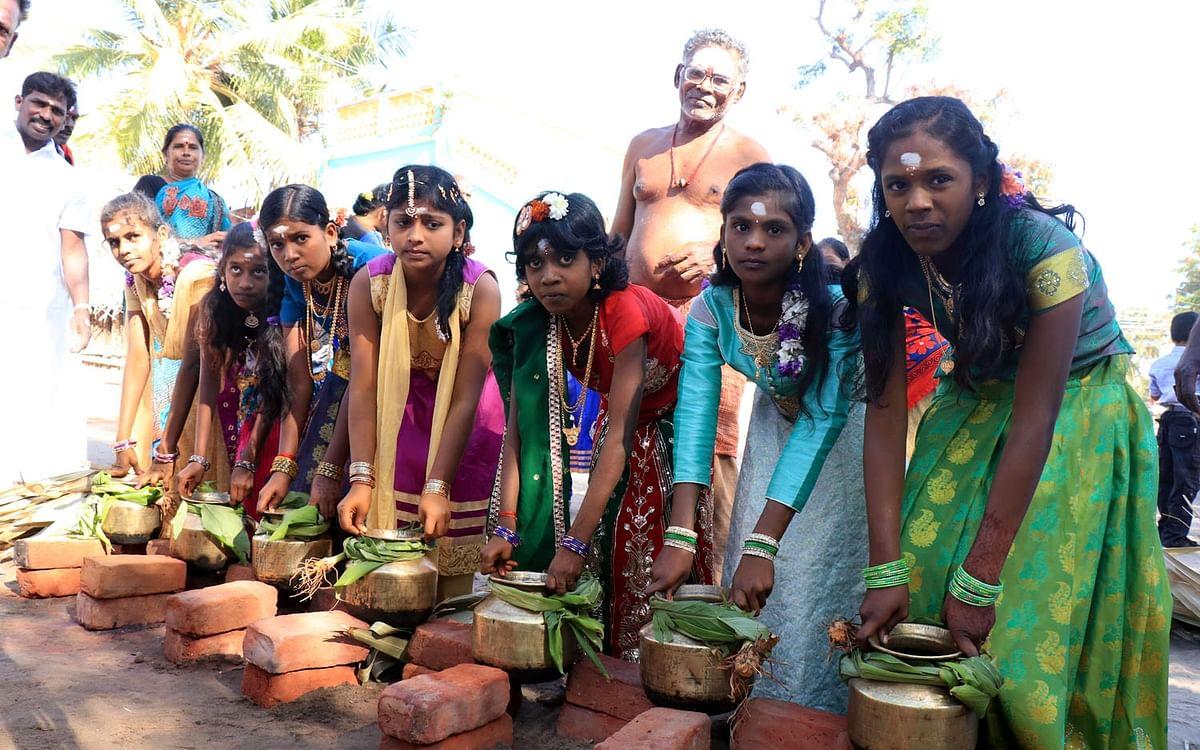 வட அமெரிக்காவின் பிரமாண்ட பொங்கல் திருவிழா! #MyVikatan