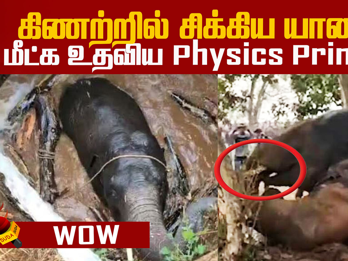 How Archimedes' Principle helped in rescuing an elephant?