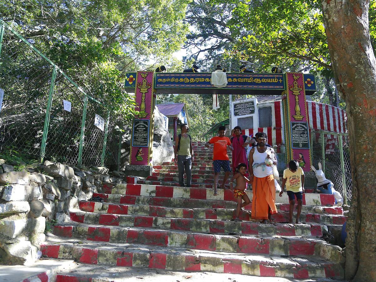 சதுரகிரி வனத்திற்குள் கரடுமுரடான வனப்பாதைகளுக்கு நடுவே ஈசனைத் தேடி... #VikatanPhotoStory