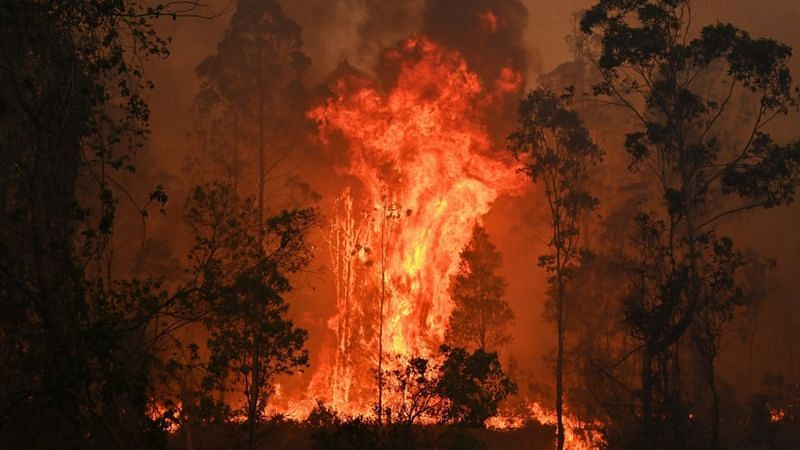 Australia Fores fire