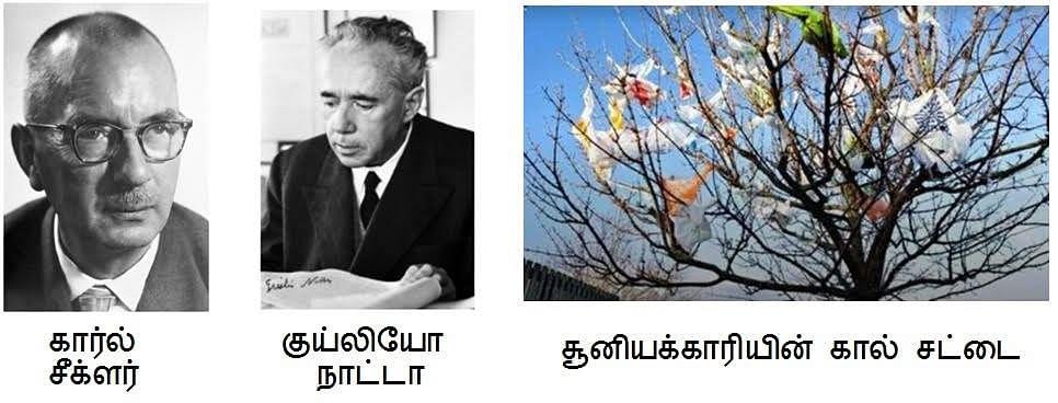 கார்ல் சீக்ளர் - குய்லியோ நாட்டா
