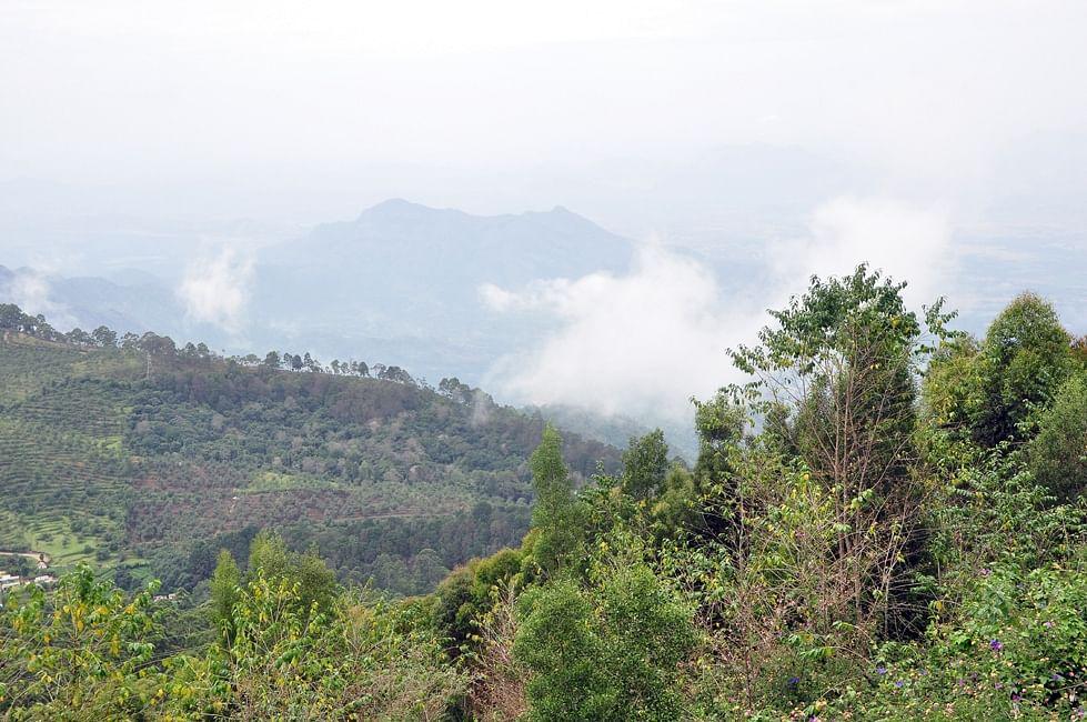 கொடைக்கானல் மலைப்பகுதி