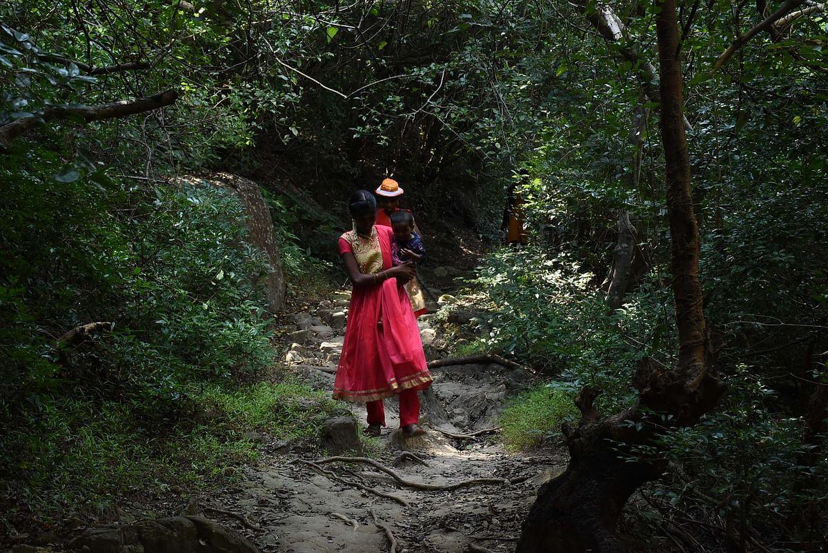 வனப்பகுதியில் இருக்கும் சுவாமியை தரிசனம் செய்ய தனது குழந்தையுடன் செல்லும் பெண்