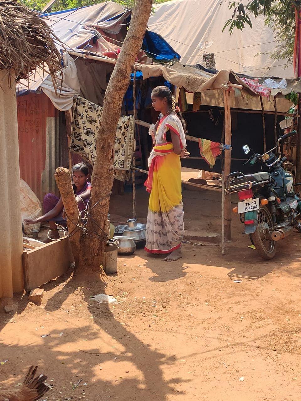 வினோநகர், மோரைப் பஞ்சாயத்து.