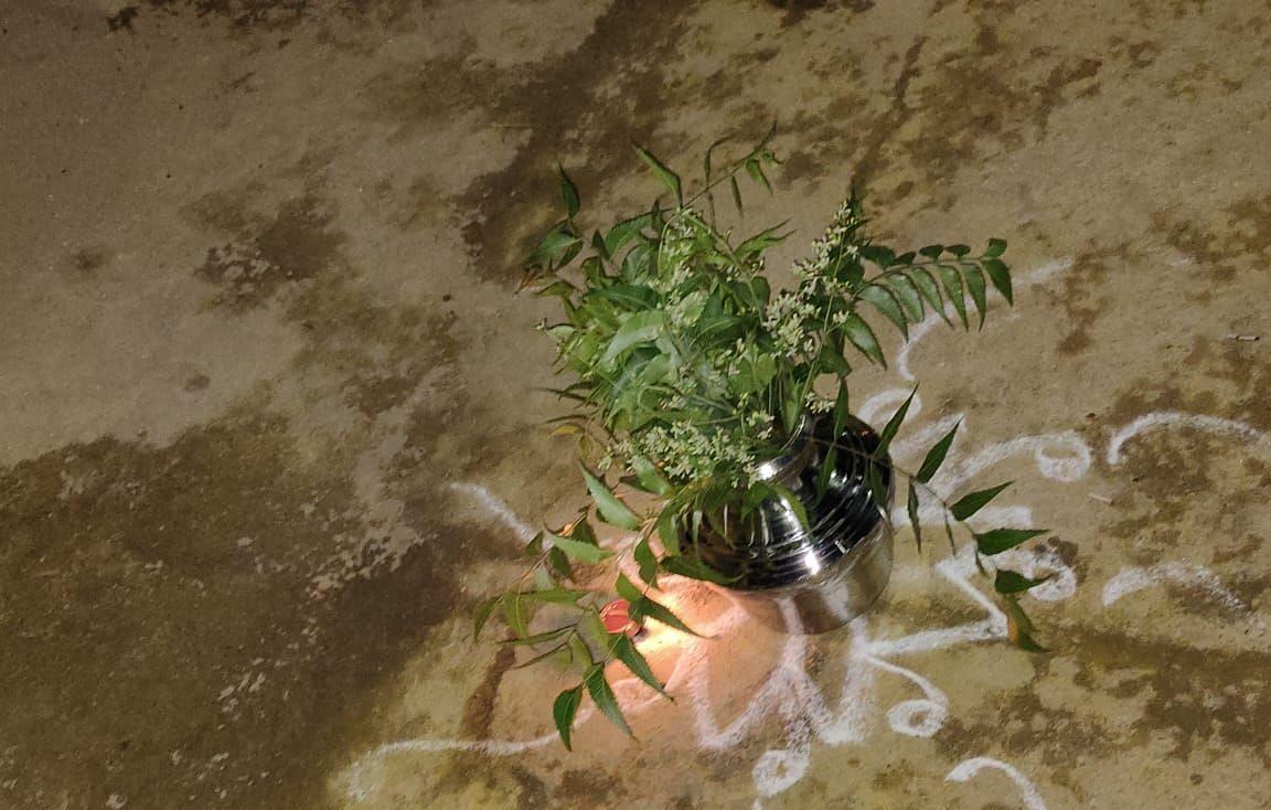 மஞ்சள் கரைத்த குடத்தின் மீது வேப்பிலை