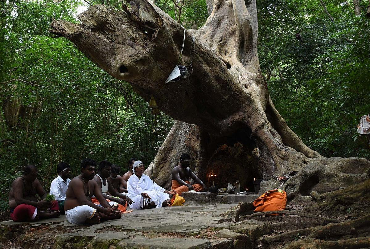 அத்தி மரத்தின் அடியில் வீற்றிருக்கும் அத்ரி மக்ரிஷி முன்பு தியானத்தில் ஈடுபடும் பக்தர்கள்.