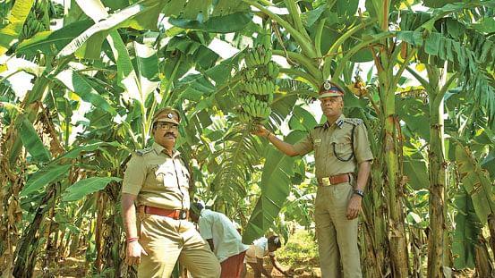 சங்கர், சண்முகசுந்தரம்