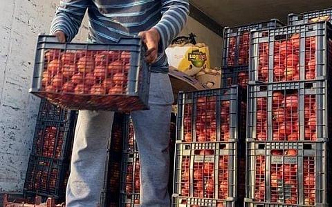 `7 நாள்களுக்கான உணவுப் பொருள்கள் கிடைத்திருக்கிறது!'- இரானில் தவிக்கும் 721 இந்திய மீனவர்கள்