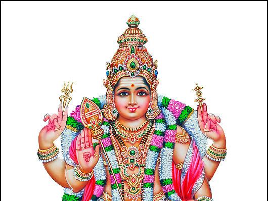 நோய் போக்கும் பாலதண்டாயுதபாணி... இல்லம் தேடிவரும் இறை தரிசனம்! #worshipathome