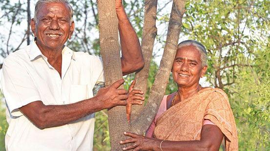 தங்கவேல் - பழனியம்மாள் தம்பதி