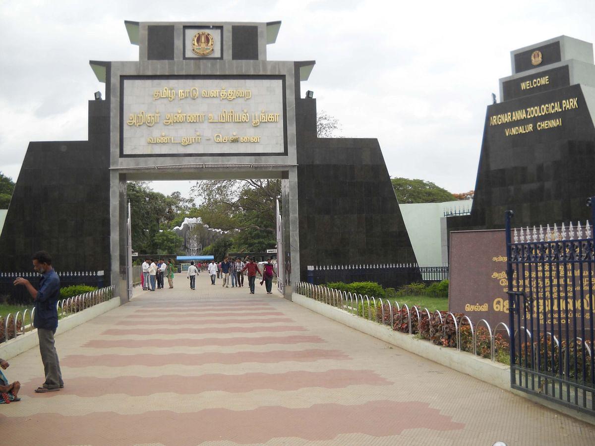 வண்டலூர் உயிரியல் பூங்கா