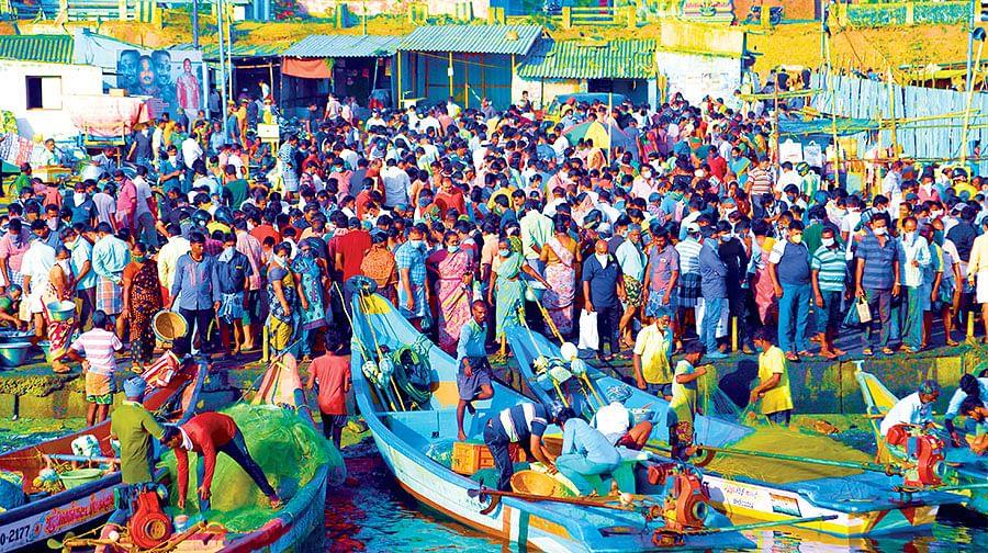 சென்னையில் மீன் வாங்கத் திரண்ட பொதுமக்கள்