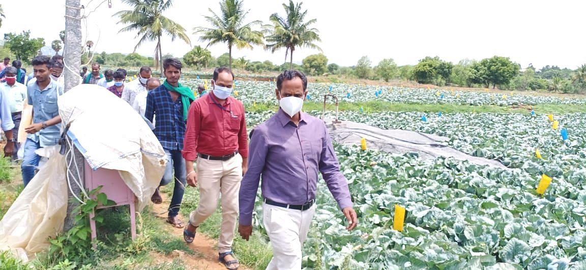 ஆய்வு மேற்கொண்ட கலெக்டர் பிரபாகர்
